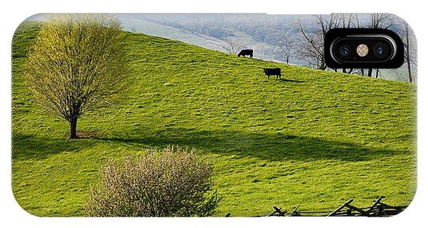 Mountain Pasture With Two Cows IPhone Case