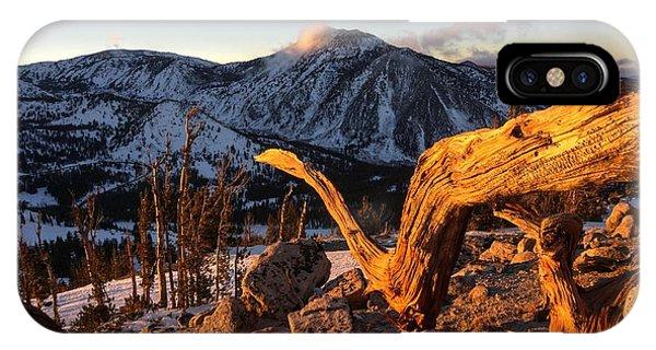 Mountain Snake IPhone Case