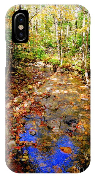 Mountain Stream Covered With Fall Leaves IPhone Case