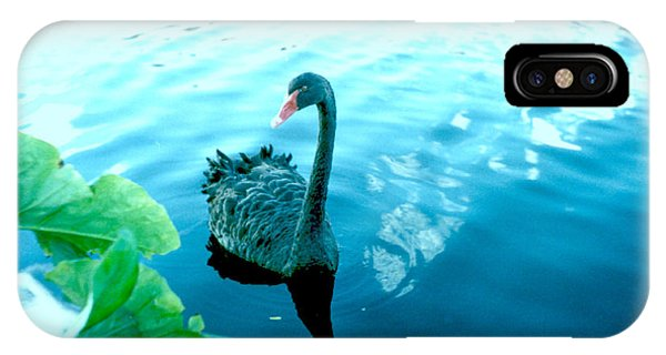 Mourning Swan Song IPhone Case