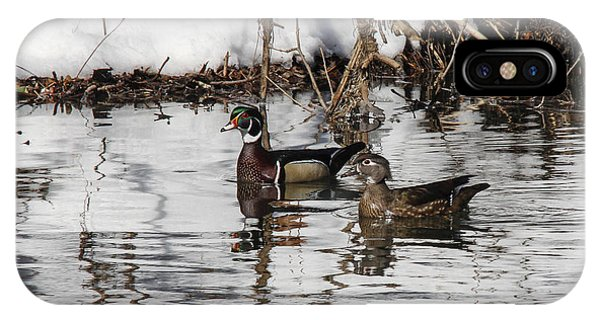 Mr. And Mrs. Wood Duck Phone Case by Jill Bell