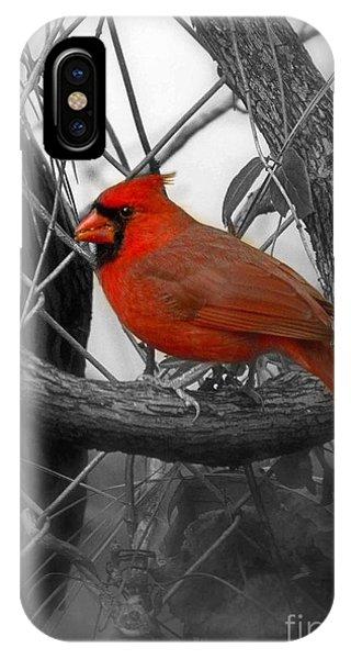 Mr Cardinal -card IPhone Case
