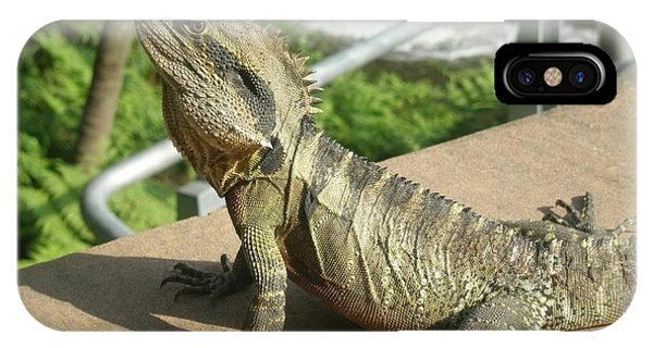Mr Lizard Posing IPhone Case