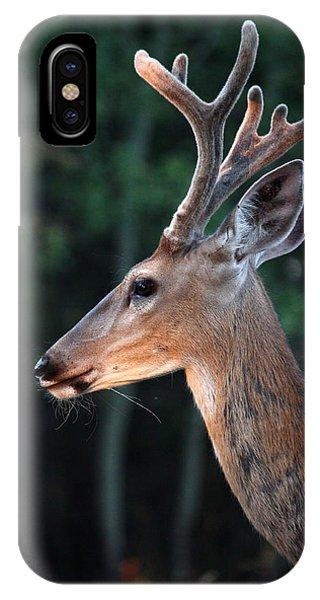 Mr. Majestic IPhone Case