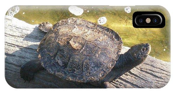 Mr Camaflauged Turtle IPhone Case