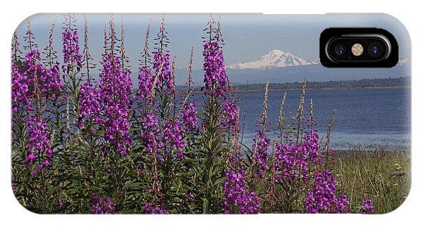 Mt Baker IPhone Case