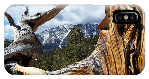 Mt. Charleston Thru A Tree IPhone Case