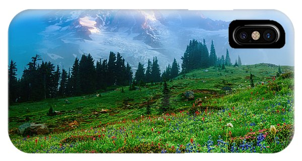Mt. Rainier And Wildflowers IPhone Case