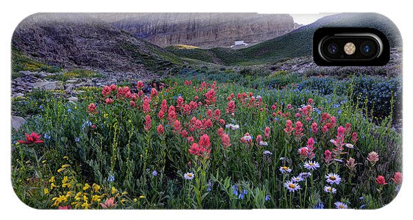 Indian Peaks Wilderness iPhone Case - Mt. Timpanogos Wildflowers At Sunset by Gary Whitton