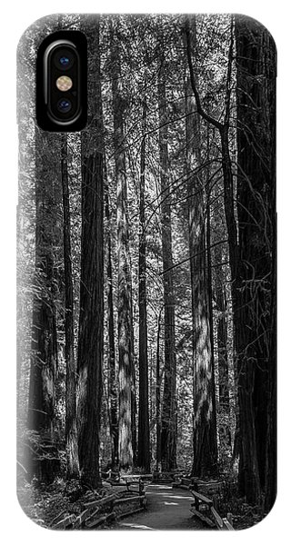 Muir Woods Giants IPhone Case
