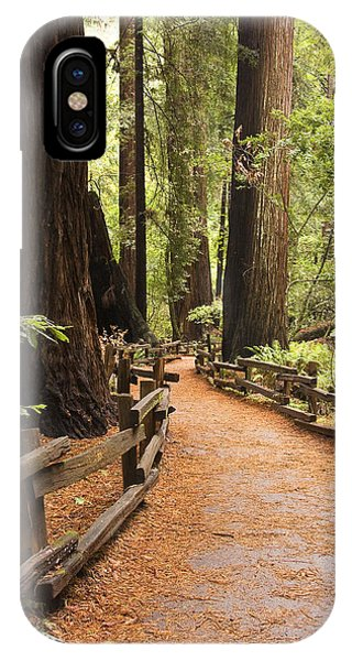 IPhone Case featuring the photograph Muir Woods Trail by Susan Leonard