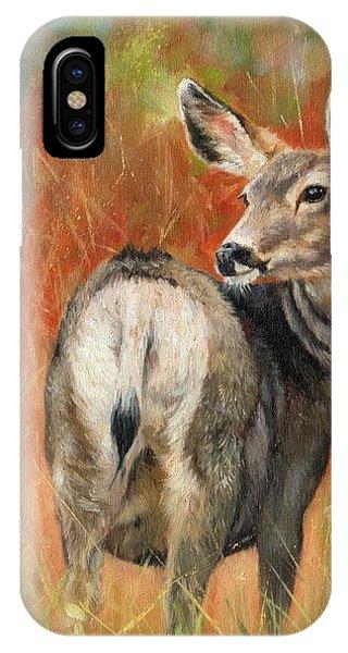 Mule Deer iPhone Case - Mule Deer by David Stribbling