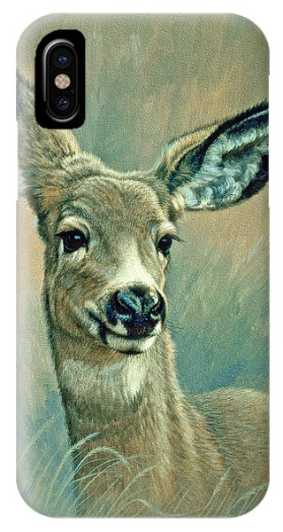 Deer iPhone Case - Muley Fawn At Six Months by Paul Krapf