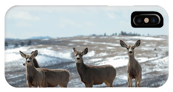 Mulies On A Mission IPhone Case