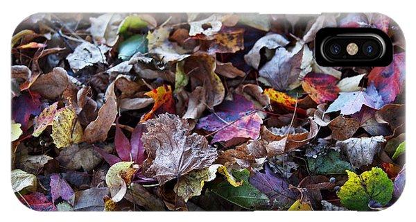 Multicolored Autumn Leaves IPhone Case