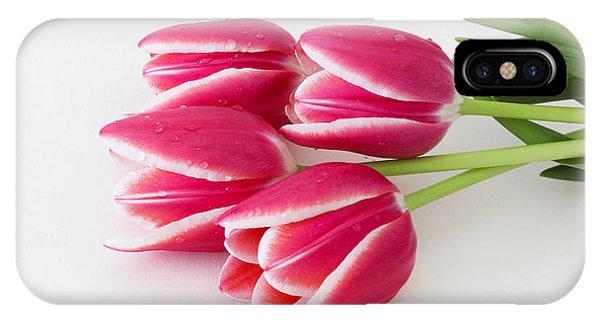 Multicolored Tulips IPhone Case