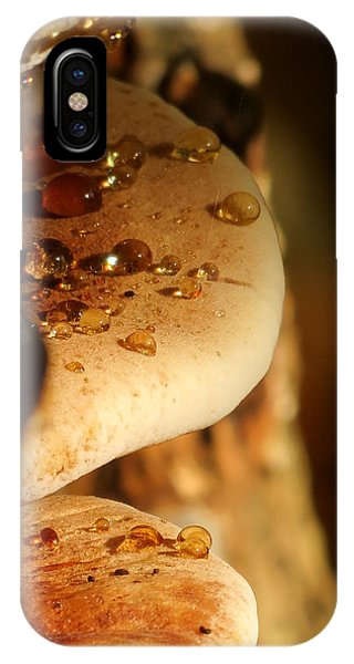 Mushroom Mystery IPhone Case