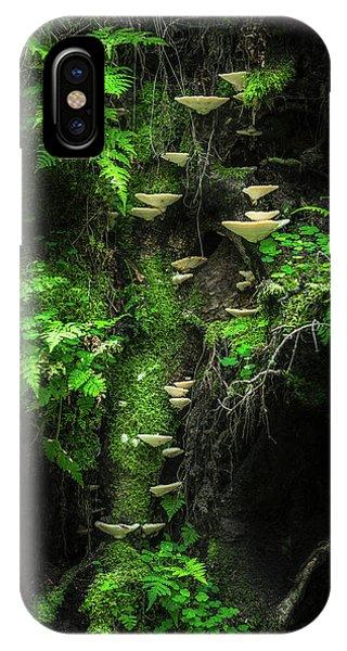 Lush iPhone Case - Mushroom Wall by Petri Damst??n