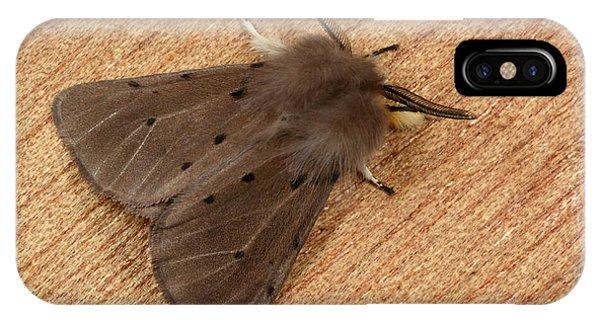 Muslin Moth Phone Case by Nigel Downer