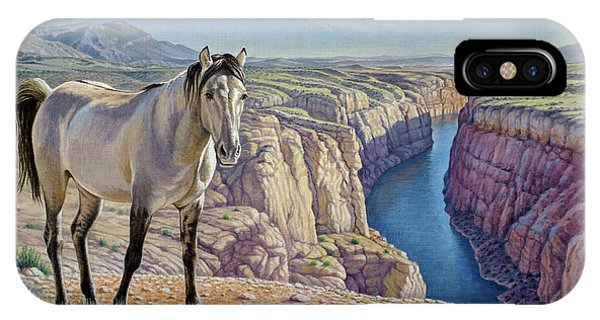Wild Horses iPhone Case - Mustang At Bighorn Canyon by Paul Krapf