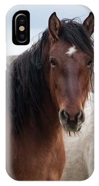 Mustang Beauty  IPhone Case