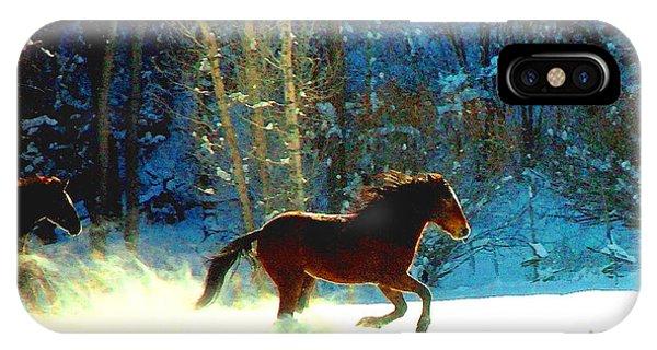 Mustangs Gallope El Valle Nm IPhone Case