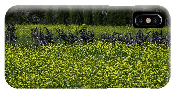Mustard iPhone Case - Mustard Grass In An Old Vineyard by Garry Gay