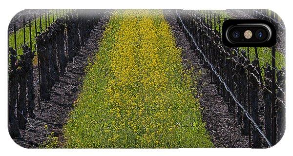 Mustard iPhone Case - Mustard Grass In Vineyards by Garry Gay