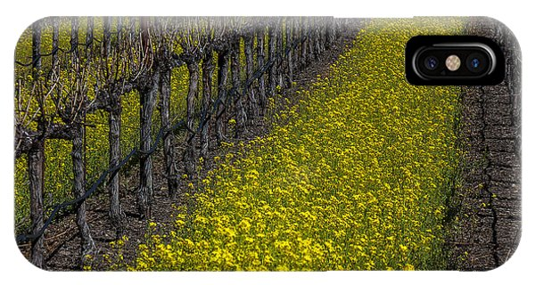 Mustard iPhone Case - Mustrad Grass In The Vineyards by Garry Gay