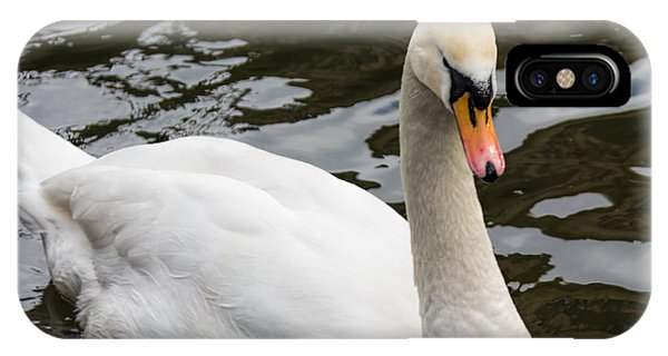 Mute Swan At Saltaire  IPhone Case