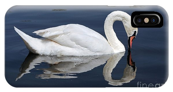 Mute Swan Kissing Its Reflection IPhone Case