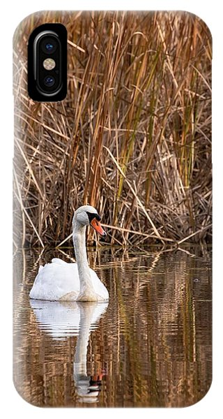 Mute Swan Reflection IPhone Case