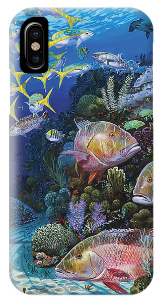 Bahamas iPhone Case - Mutton Reef Re002 by Carey Chen