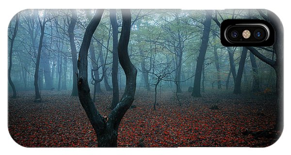 Leaf iPhone Case - My Autumn Room by Nicu Hoandra