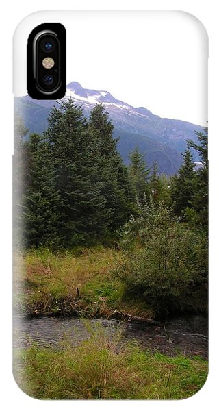 My Favorite Bear Watching Spot IPhone Case