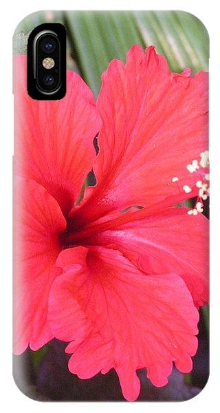 My Favorite Red Garden Friend IPhone Case