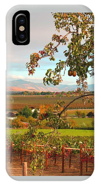 My Favorite Valley View - Autumn In Southern Oregon IPhone Case