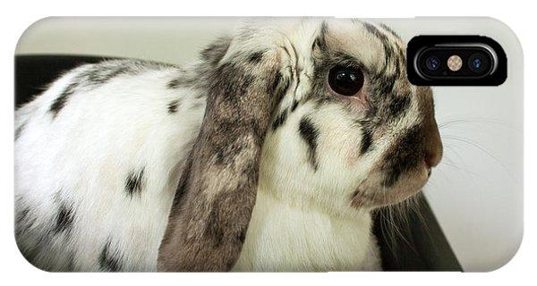 My Friend Bunny IPhone Case