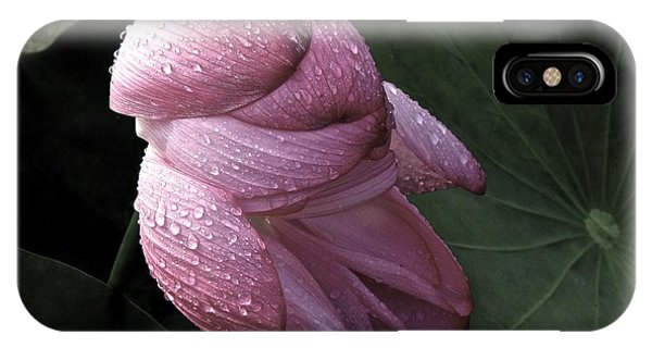 My Lotus My Love IPhone Case