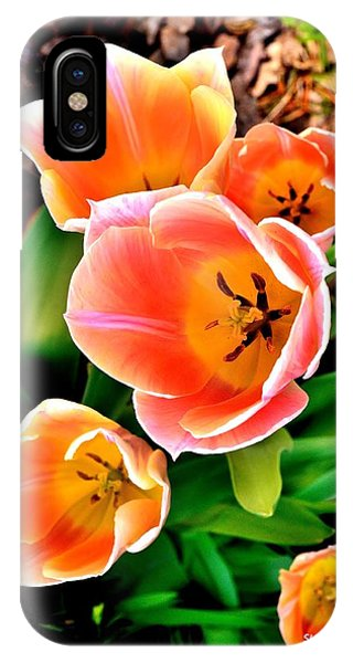 My Mom's Tulips IPhone Case
