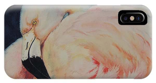 My Pink Flamingo...sold  IPhone Case