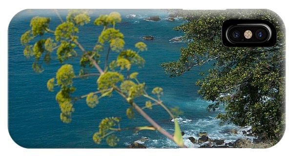 My Taormina's Landscape IPhone Case