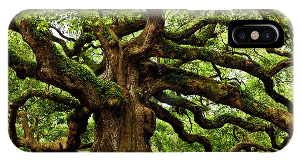 Mystical Angel Oak Tree IPhone Case