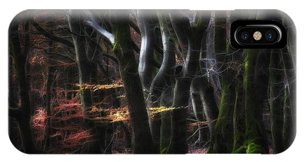 Panorama iPhone Case - Mystical Speulderforest by Saskia Dingemans