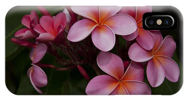 Na Lei Pua Melia O Wailua - Pink Tropical Plumeria Hawaii IPhone Case