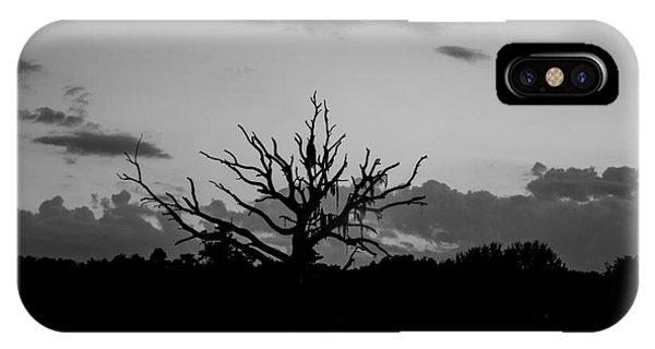 Naked Tree Phone Case by Mina Isaac