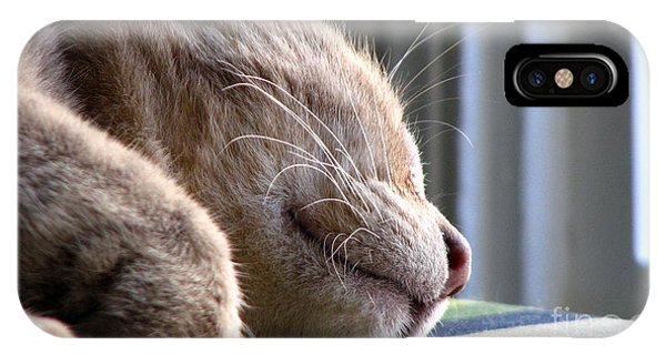 iPhone Case - Nap Time by Sandra Bauser Digital Art