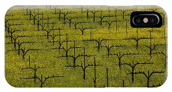 Mustard iPhone Case - Napa Mustard Grass by Garry Gay