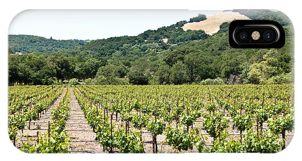 Napa Vineyard With Hills IPhone Case