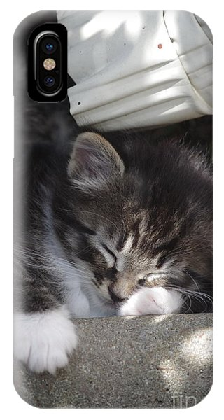 Naptime Kitty IPhone Case